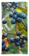 Autumn Viburnum Berries Series #2 Beach Towel