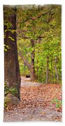 Autumn Walk - Impressions Beach Towel