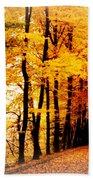 Autumn Walk In Belgium Beach Towel