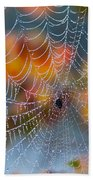 Autumn Web Beach Towel