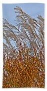 Autumn Wind Through The Grass Beach Towel