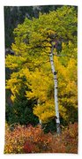 Autumn Wonder Beach Towel