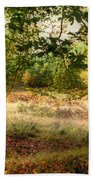 Autumn Woodland Beach Towel