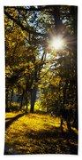 Autumnal Morning Beach Towel
