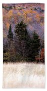 Autumnfield 2 Beach Towel