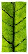 Avocado Leaf 2 Beach Towel