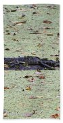 Baby Gator In The Swamp Beach Towel