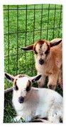 Baby Goats Beach Towel