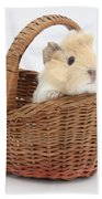 Baby Guinea Pig In A Wicker Basket Beach Towel