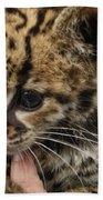 Baby Jaguar Beach Towel