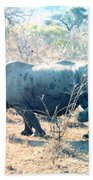 Baby Rhinoceros And Mother Beach Towel