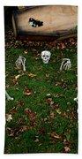 Back Yard Bone Yard Beach Towel by LeeAnn McLaneGoetz McLaneGoetzStudioLLCcom