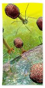 Bacteriophage T4 Virus Group 2 Beach Towel by Russell Kightley