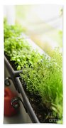 Balcony Herb Garden Beach Sheet