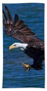 Bald Eagle On The Hunt Beach Towel
