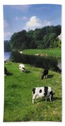 Ballyhooley, Co Cork, Ireland Friesian Beach Towel