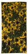 Balsamroot Field In Grand Teton Beach Towel