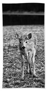 Bambi In Black And White Beach Towel