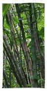 Bamboo 2 Beach Towel