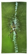 Banana Spider With Web Beach Towel
