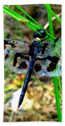 Banded Pennant Dragonfly Beach Towel