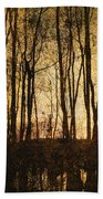 Fall Trees On A Lake Beach Towel
