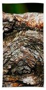 Bark Beach Towel by Christopher Gaston