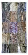 Barkitecture Beach Towel by Steve Gadomski