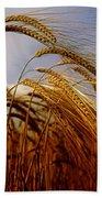 Barley, Co Meath, Ireland Beach Towel