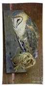 Barn Owl At Roost Beach Towel