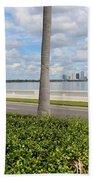 Bayshore Through Palms Beach Towel