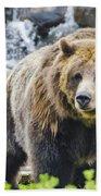 Bear On The Prowl. Beach Towel