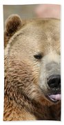 Bear Rasberry Beach Towel
