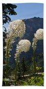 Beargrass Squaw Grass - 4 Beach Towel