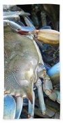 Beaufort Blue Crabs Beach Towel