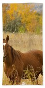 Beautiful Chestnut Horse Beach Towel