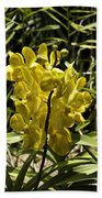 Beautiful Yellow Flowers Inside The National Orchid Garden In Singapore Beach Towel