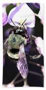 Bee And Blooms - Card Beach Towel