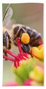 Bee At Work Beach Towel