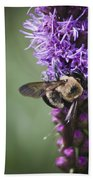 Bee On Gayfeather Squared 1 Beach Towel