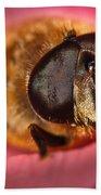 Bee On Rose Petal Beach Towel