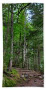 Beech Mountain Trail Acadia Beach Towel
