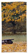 Bench In The Autumn Landscape Beach Towel