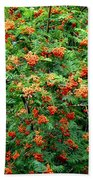 Berries In Profusion Beach Sheet