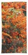 Berry Orange Beach Towel