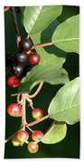 Berry Stages Beach Towel