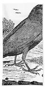 Bewick: Raven Beach Towel