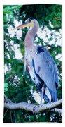 Big Bird - Great Blue Heron Beach Towel