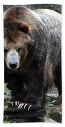 Big Brown Bear Beach Towel