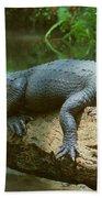 Big Gator On A Log Beach Towel